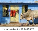 india rajasthan jodhpur. blue... | Shutterstock . vector #121495978