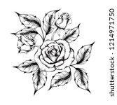 black white rose | Shutterstock . vector #1214971750