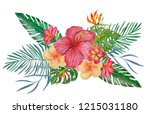 watercolor bouqet with tropical ... | Shutterstock . vector #1215031180
