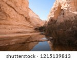 ein avdat   canyon in negev... | Shutterstock . vector #1215139813