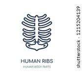 human ribs icon. human ribs... | Shutterstock .eps vector #1215204139