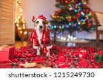dog under a christmas tree. pet ... | Shutterstock . vector #1215249730