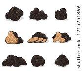 black truffle mushroom vector... | Shutterstock .eps vector #1215251869