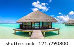 panorama of water villas ... | Shutterstock . vector #1215290800