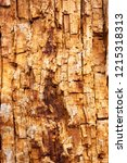 cracked wood board. old rotten...   Shutterstock . vector #1215318313