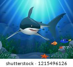 sharks and coral reefs in the... | Shutterstock . vector #1215496126