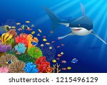 sharks and coral reefs in the... | Shutterstock . vector #1215496129