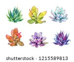 succulent plants set. watercolor | Shutterstock . vector #1215589813