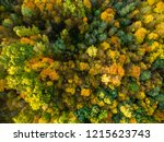 aerial top down view of autumn... | Shutterstock . vector #1215623743