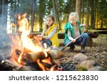 cute little sisters roasting... | Shutterstock . vector #1215623830