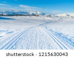 view of snowy landscape and...   Shutterstock . vector #1215630043