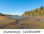 """Lake """"mittlerer Pfauenteich"""" In ..."""