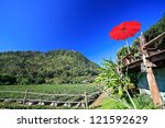 red umbrellas and blue sky | Shutterstock . vector #121592629