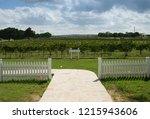 texas wine country vinyard    Shutterstock . vector #1215943606