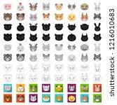 muzzles of animals cartoon... | Shutterstock .eps vector #1216010683