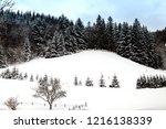 winter in schwarzwald. sunny...   Shutterstock . vector #1216138339