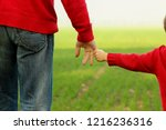 the parent holds the hand of a... | Shutterstock . vector #1216236316
