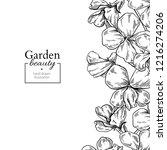 violet flower drawing. hand... | Shutterstock . vector #1216274206
