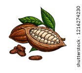 cocoa superfood drawing set.... | Shutterstock . vector #1216274230