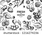 wild berry drawing. hand drawn... | Shutterstock . vector #1216274236