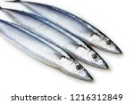 three pacific saury  cololabis... | Shutterstock . vector #1216312849