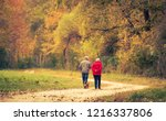 old couple walking in the... | Shutterstock . vector #1216337806