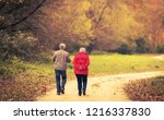 old couple walking in the... | Shutterstock . vector #1216337830