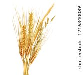yellow ripe spikelets and... | Shutterstock .eps vector #1216340089