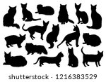 Stock vector  hand drawn cat silhouettes vector illustration 1216383529
