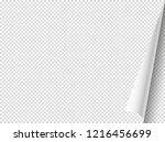 bending paper vector mockup.... | Shutterstock .eps vector #1216456699