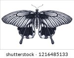 beautiful butterfly tattoo... | Shutterstock .eps vector #1216485133