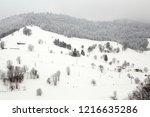 winter in schwarzwald.    Shutterstock . vector #1216635286