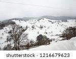 winter in schwarzwald....   Shutterstock . vector #1216679623