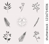 a set of nine hand drawn floral ...   Shutterstock .eps vector #1216714036