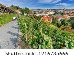 prague   czech republic  ... | Shutterstock . vector #1216735666