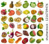 set of tropical fruits isolated ... | Shutterstock . vector #1216739476