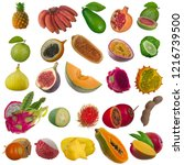 set of tropical fruits isolated ... | Shutterstock . vector #1216739500