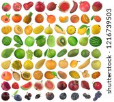 set of fruit and berries... | Shutterstock . vector #1216739503
