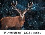 noble deer male in a snowy... | Shutterstock . vector #1216745569
