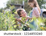 mother with her young daughter... | Shutterstock . vector #1216853260