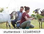 two farmers  husband and wife... | Shutterstock . vector #1216854019