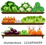 group of vegetables on shelf... | Shutterstock .eps vector #1216954459