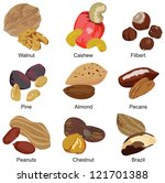 set of the most popular nuts on a white background