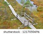 wooden pathway through swamp... | Shutterstock . vector #1217050696