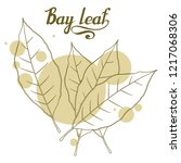 hand drawn bay leaf  spicy... | Shutterstock .eps vector #1217068306