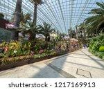 singapore   august 21 2018 ... | Shutterstock . vector #1217169913