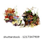 watercolor hand drawn seabed.... | Shutterstock . vector #1217347909