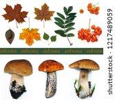Wild Autumn Harvest Produce Of...