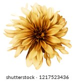 Vintage Yellow Brown Dahlia ...