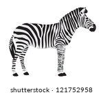 Vector Zebra On White Background